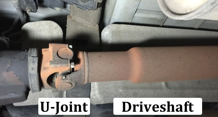 Driveshaft U-joint Differential